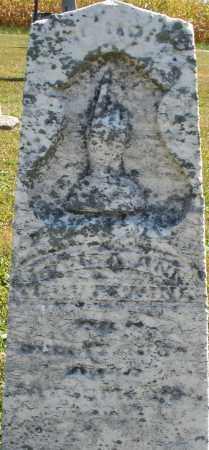 TROUTWINE, ? ANN - Darke County, Ohio | ? ANN TROUTWINE - Ohio Gravestone Photos