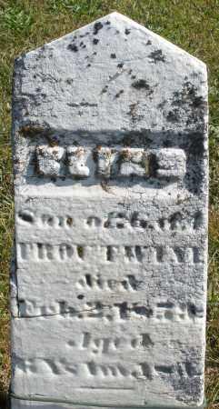 TROUTWINE, SON - Darke County, Ohio | SON TROUTWINE - Ohio Gravestone Photos