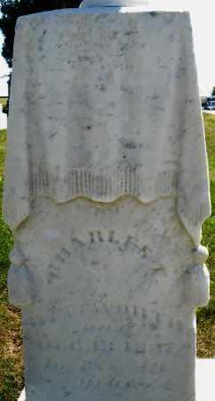 WENTWORTH, CHARLES - Darke County, Ohio | CHARLES WENTWORTH - Ohio Gravestone Photos