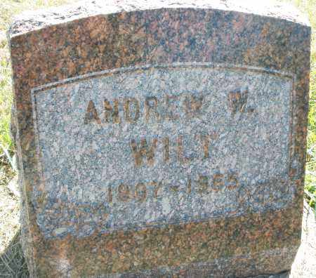 WILT, ANDREW W. - Darke County, Ohio | ANDREW W. WILT - Ohio Gravestone Photos