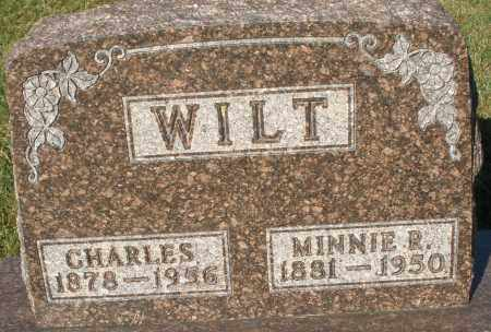 WILT, MINNIE R. - Darke County, Ohio | MINNIE R. WILT - Ohio Gravestone Photos