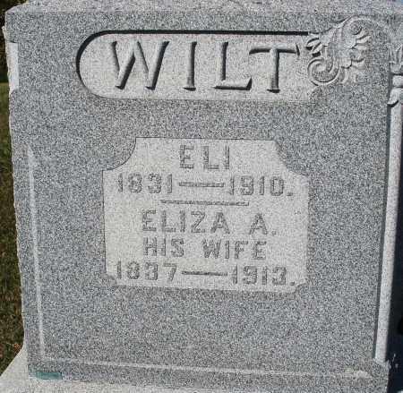 WILT, ELIZABETH A. - Darke County, Ohio   ELIZABETH A. WILT - Ohio Gravestone Photos