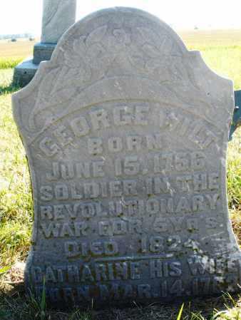 WILT, CATHARINE - Darke County, Ohio   CATHARINE WILT - Ohio Gravestone Photos