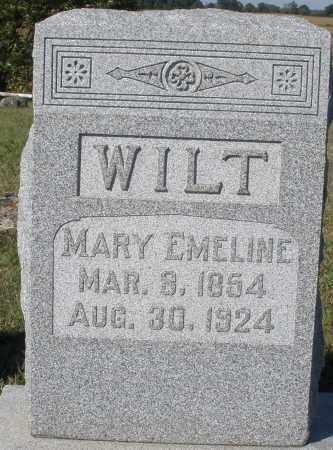 WILT, MARY EMELINE - Darke County, Ohio | MARY EMELINE WILT - Ohio Gravestone Photos