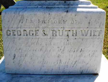 WILT, MEMORIAL - Darke County, Ohio | MEMORIAL WILT - Ohio Gravestone Photos