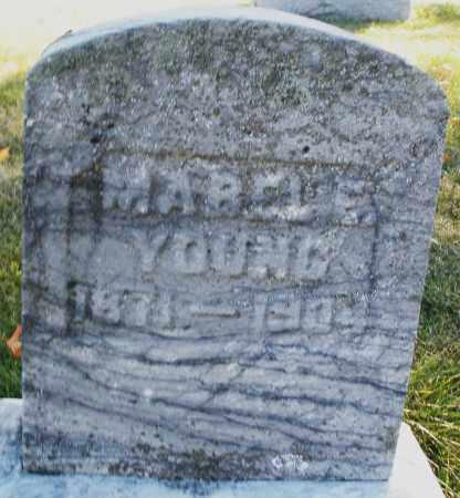 YOUNG, MABEL E. - Darke County, Ohio | MABEL E. YOUNG - Ohio Gravestone Photos