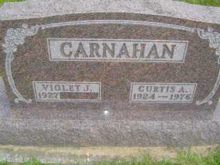 CARNAHAN, VIOLET J - Defiance County, Ohio | VIOLET J CARNAHAN - Ohio Gravestone Photos