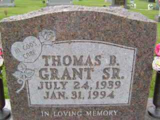 GRANT, THOMAS D - Defiance County, Ohio | THOMAS D GRANT - Ohio Gravestone Photos