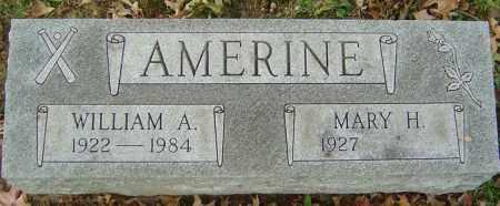 AMERINE, WILLIAM A - Delaware County, Ohio   WILLIAM A AMERINE - Ohio Gravestone Photos