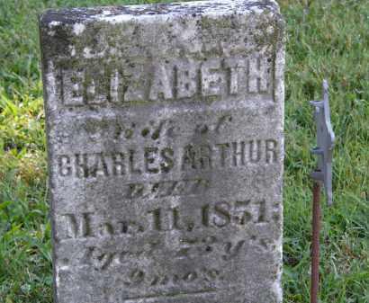 ARTHUR, ELIZABETH - Delaware County, Ohio | ELIZABETH ARTHUR - Ohio Gravestone Photos