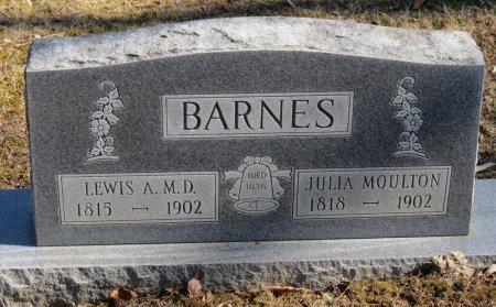 BARNES, JULIA - Delaware County, Ohio | JULIA BARNES - Ohio Gravestone Photos