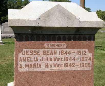 BEAN, AMELIA J. - Delaware County, Ohio | AMELIA J. BEAN - Ohio Gravestone Photos