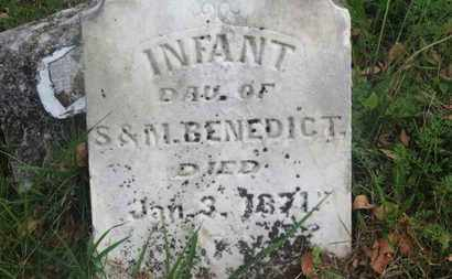 BENEDICT, INF. DAU. - Delaware County, Ohio | INF. DAU. BENEDICT - Ohio Gravestone Photos
