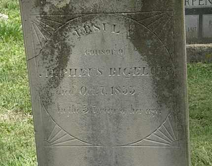 BIGELOW, URSALA - Delaware County, Ohio | URSALA BIGELOW - Ohio Gravestone Photos