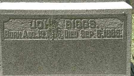 BIGGS, JOHN - Delaware County, Ohio | JOHN BIGGS - Ohio Gravestone Photos