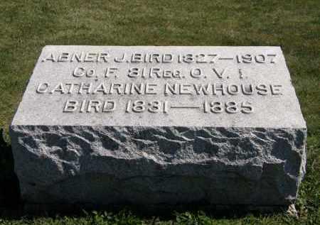 BIRD, CATHARINE - Delaware County, Ohio   CATHARINE BIRD - Ohio Gravestone Photos