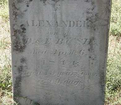 BUSH, ALEXANDER - Delaware County, Ohio | ALEXANDER BUSH - Ohio Gravestone Photos