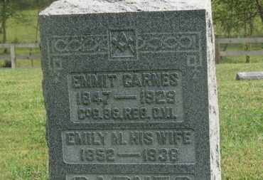 CARNES, EMMIT - Delaware County, Ohio   EMMIT CARNES - Ohio Gravestone Photos