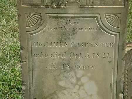 CARPENTER, JAMES - Delaware County, Ohio | JAMES CARPENTER - Ohio Gravestone Photos
