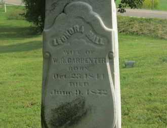 CARPENTER, LEONORA - Delaware County, Ohio | LEONORA CARPENTER - Ohio Gravestone Photos