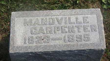 CARPENTER, MANDVILLE - Delaware County, Ohio | MANDVILLE CARPENTER - Ohio Gravestone Photos