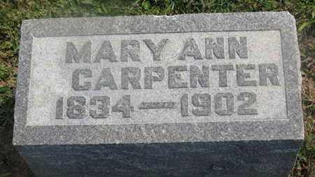CARPENTER, MARY ANN - Delaware County, Ohio | MARY ANN CARPENTER - Ohio Gravestone Photos