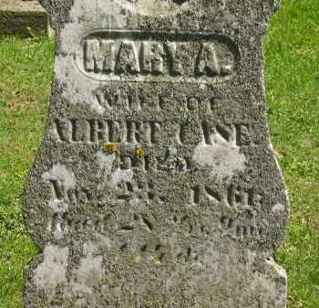 CASE, MARY A. - Delaware County, Ohio | MARY A. CASE - Ohio Gravestone Photos