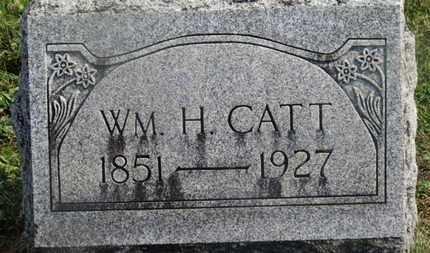 CATT, WM. H. - Delaware County, Ohio   WM. H. CATT - Ohio Gravestone Photos