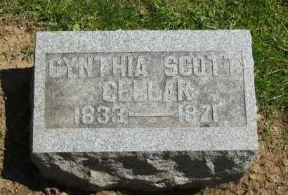 CELLAR, CYNTHIA SCOTT - Delaware County, Ohio | CYNTHIA SCOTT CELLAR - Ohio Gravestone Photos