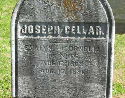 CELLAR, JOSEPH - Delaware County, Ohio | JOSEPH CELLAR - Ohio Gravestone Photos
