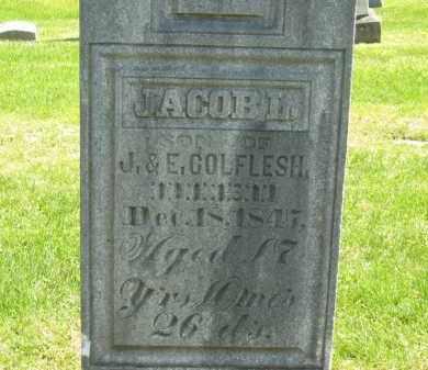 COLEFLESH, E. - Delaware County, Ohio | E. COLEFLESH - Ohio Gravestone Photos
