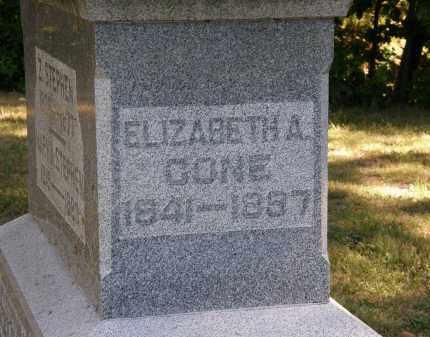 CONE, ELIZABETH A. - Delaware County, Ohio   ELIZABETH A. CONE - Ohio Gravestone Photos