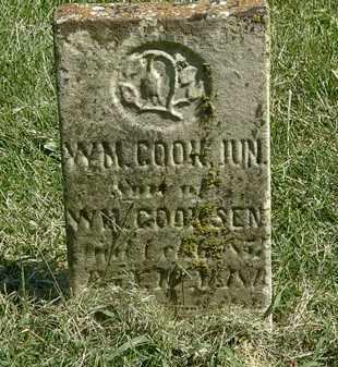 COOK, WM. JUN. - Delaware County, Ohio | WM. JUN. COOK - Ohio Gravestone Photos