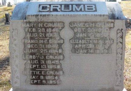 CRUMB, ELIZABETH M. - Delaware County, Ohio | ELIZABETH M. CRUMB - Ohio Gravestone Photos