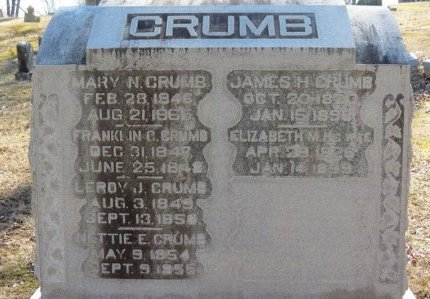 CRUMB, FRANKLIN C. - Delaware County, Ohio | FRANKLIN C. CRUMB - Ohio Gravestone Photos