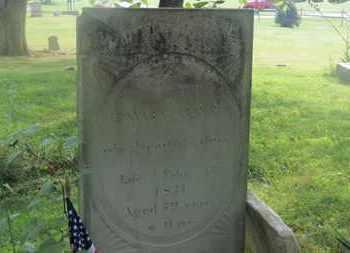 CULVER, EDWARD - Delaware County, Ohio | EDWARD CULVER - Ohio Gravestone Photos