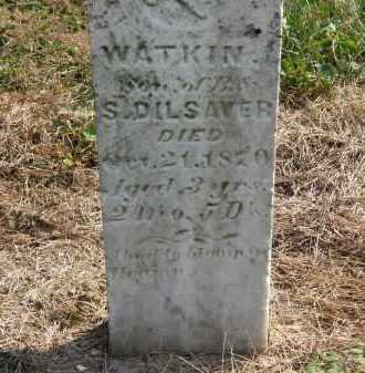 DILSAVER, WATKIN - Delaware County, Ohio | WATKIN DILSAVER - Ohio Gravestone Photos