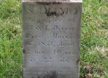 DIVEN, M. - Delaware County, Ohio | M. DIVEN - Ohio Gravestone Photos