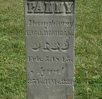 DOMIGAN, J. - Delaware County, Ohio   J. DOMIGAN - Ohio Gravestone Photos
