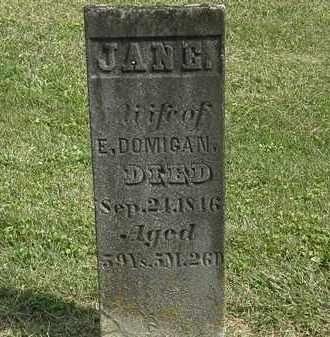 DOMIGAN, JANE - Delaware County, Ohio | JANE DOMIGAN - Ohio Gravestone Photos