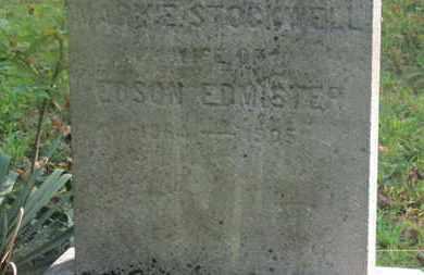 EDMISTER, MARY E. STOCKWELL - Delaware County, Ohio | MARY E. STOCKWELL EDMISTER - Ohio Gravestone Photos