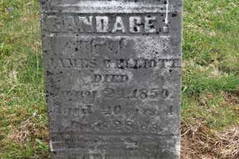 ELLIOTT, CANDACE - Delaware County, Ohio | CANDACE ELLIOTT - Ohio Gravestone Photos