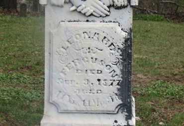 FERGUSON, LEONARD - Delaware County, Ohio | LEONARD FERGUSON - Ohio Gravestone Photos