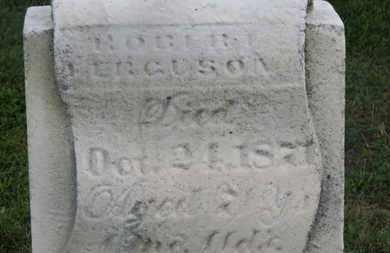 FERGUSON, ROBERT - Delaware County, Ohio | ROBERT FERGUSON - Ohio Gravestone Photos