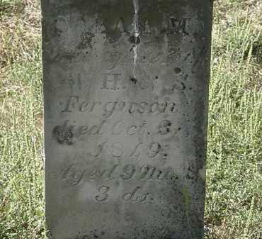 FERGUSON, SARAH M. - Delaware County, Ohio | SARAH M. FERGUSON - Ohio Gravestone Photos