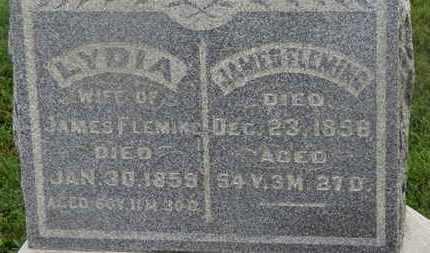 FLEMING, LYDIA - Delaware County, Ohio   LYDIA FLEMING - Ohio Gravestone Photos