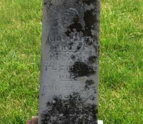 FLEMING, MAGGIE - Delaware County, Ohio | MAGGIE FLEMING - Ohio Gravestone Photos