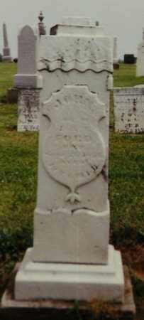 FORD, JOHN - Delaware County, Ohio | JOHN FORD - Ohio Gravestone Photos
