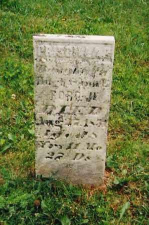 FORD, PRISCILLA B. - Delaware County, Ohio   PRISCILLA B. FORD - Ohio Gravestone Photos