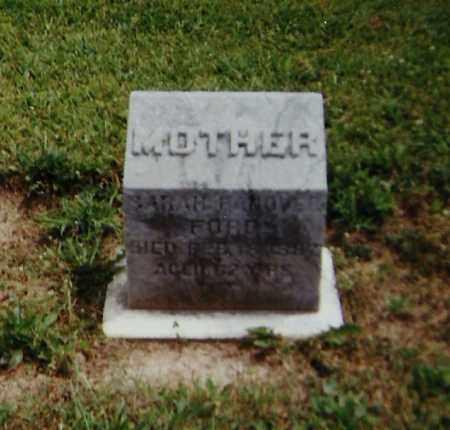 HANOVER FORD, SARAH - Delaware County, Ohio | SARAH HANOVER FORD - Ohio Gravestone Photos